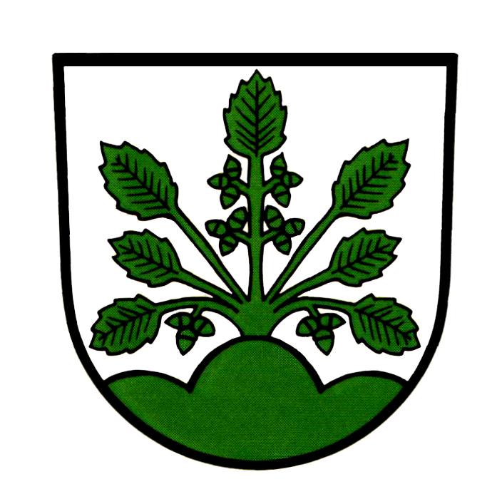Wappen von Haslach im Kinzigtal