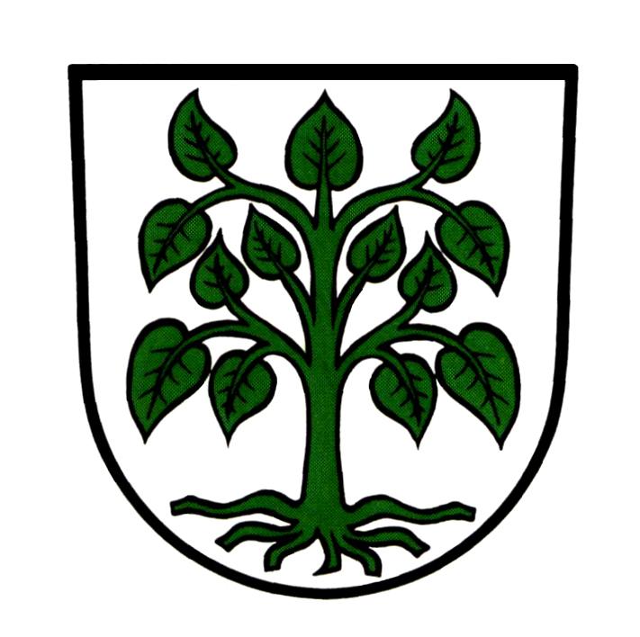 Wappen von Schutterwald