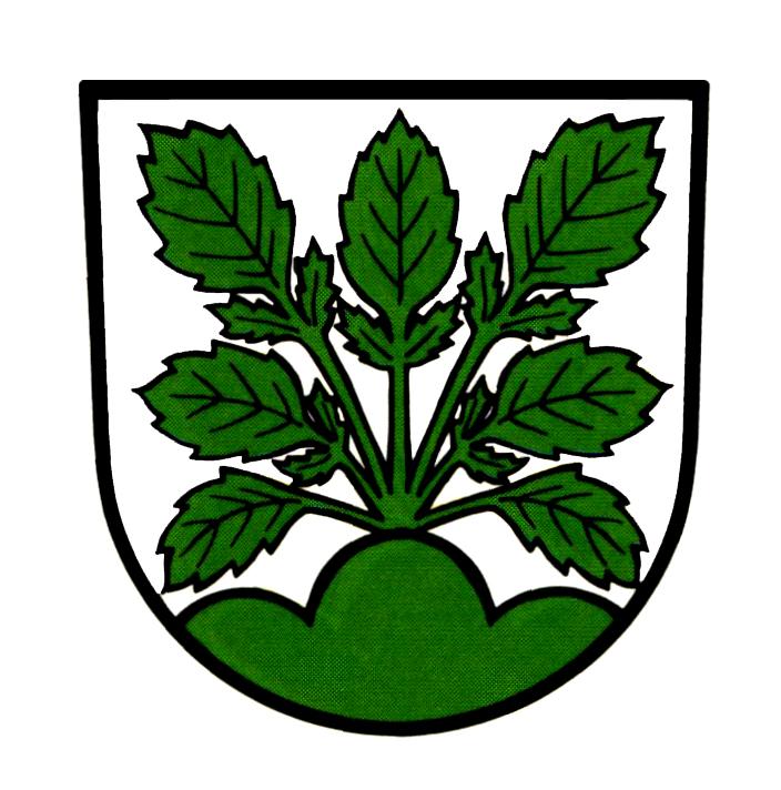Wappen von Hasel