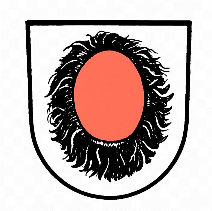 Wappen von Pfaffenhofen
