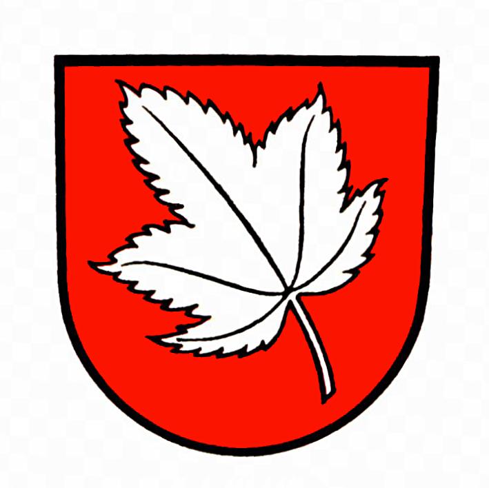Wappen von Ahorn