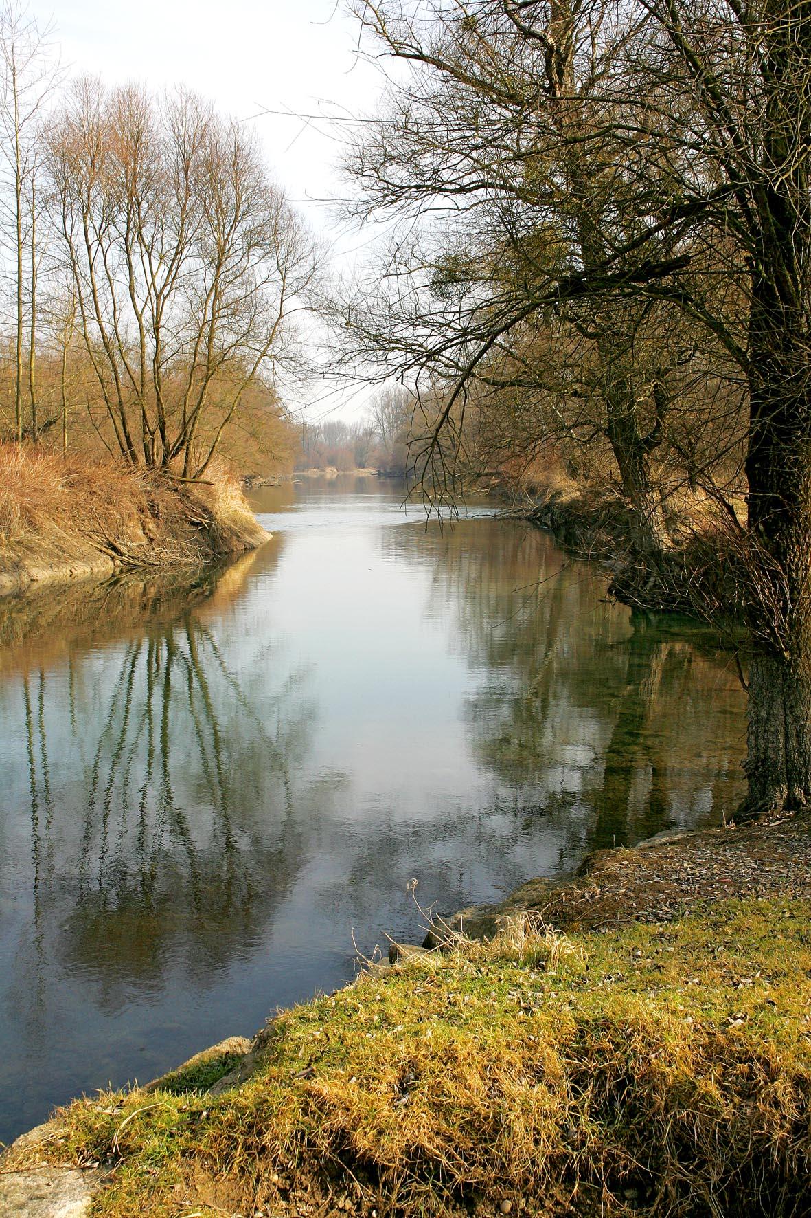 Au Am Rhein