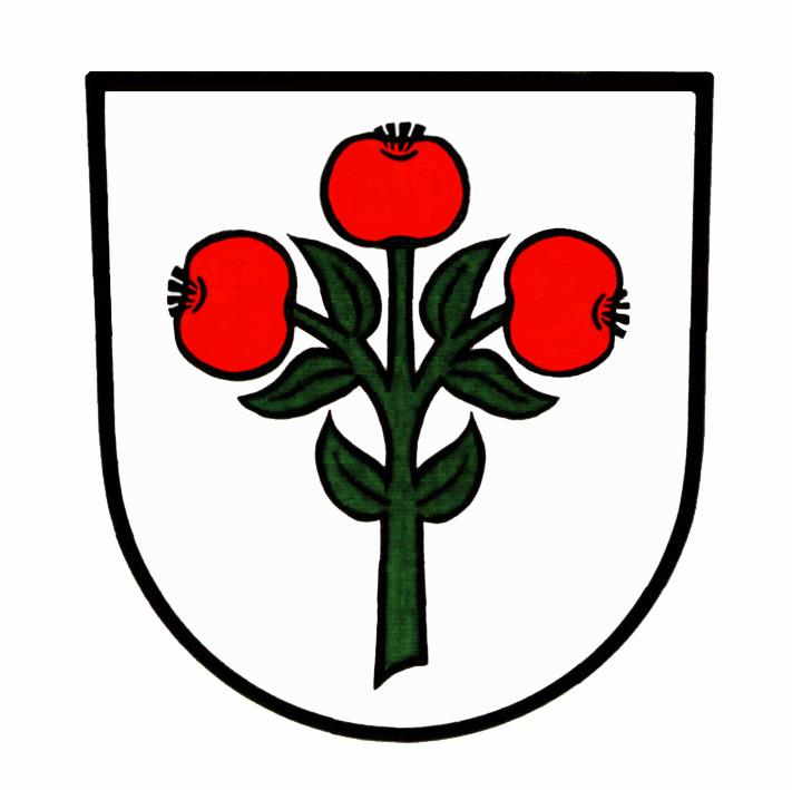 Wappen von Schwarzach